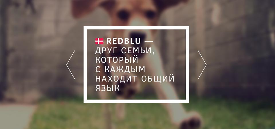 <p><b>Нафоне одного блока вразделе «Бренд» попросьбе заказчика поселилась собака.</b></p><p>Своей счастливой мордой она олицетворяет любимца всей семьи, каким, поидее, должна стать продукция RedBlu.</p>